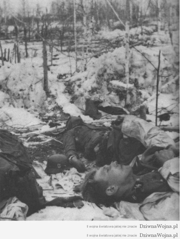 Ciala zabitych członkow Waffen SS