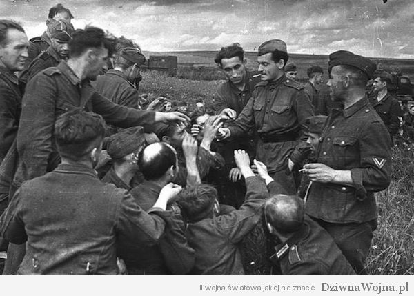 Sowieci częstują niemieckich jeńców papierosami. Łuk Kurski 1943