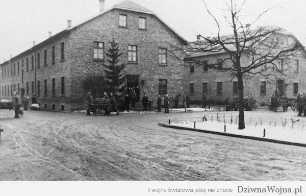 Choinka stoi przed Blokiem 15 niemieckiego obozu koncentracyjnego Auschwitz I